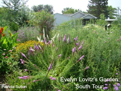 EvelynLovitz July 2012w-sig.jpg